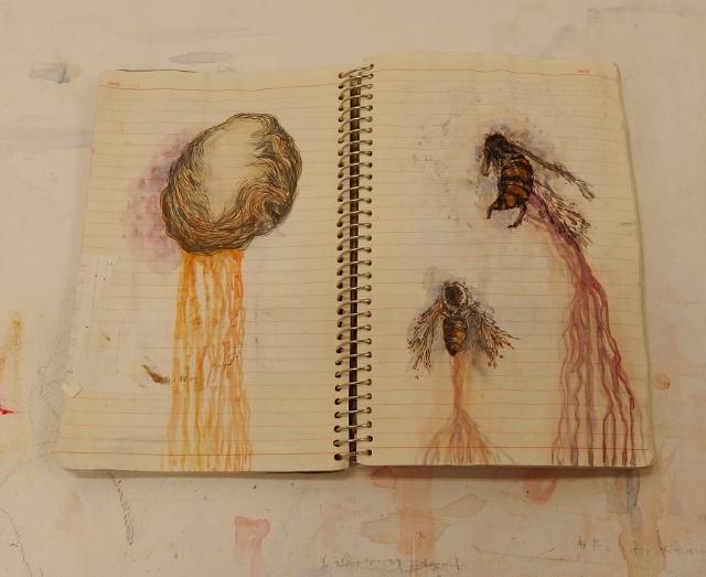 iwana yasutake drawing book